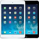 iPad mini 2nd Gen 2013-7.9 (A1489/A1490/A1491)