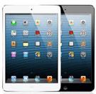 iPad mini 1st Gen 2012-7.9 (A1432/A1454/A1455)